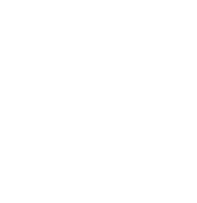 Dolfi_website_Footer_Logo_web